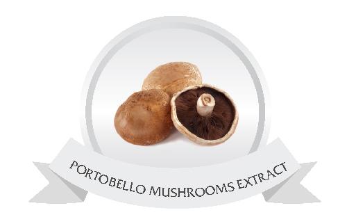 PORTOBELLO MUSHROOMS EXTRACT