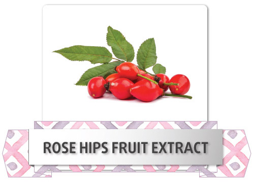 rose-hips-fruit-extract