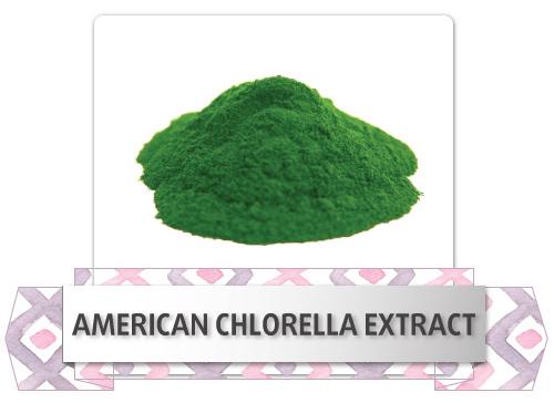 american-chlorella-extract